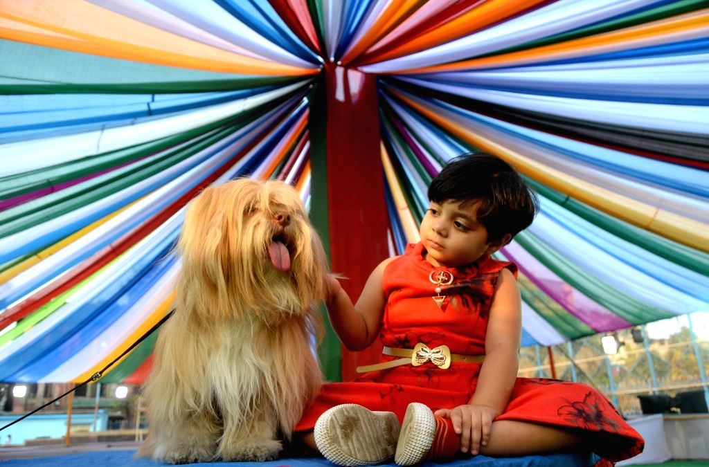 A little girl plays with a dog during a dog show, in Kolkata, on Feb 24, 2019.