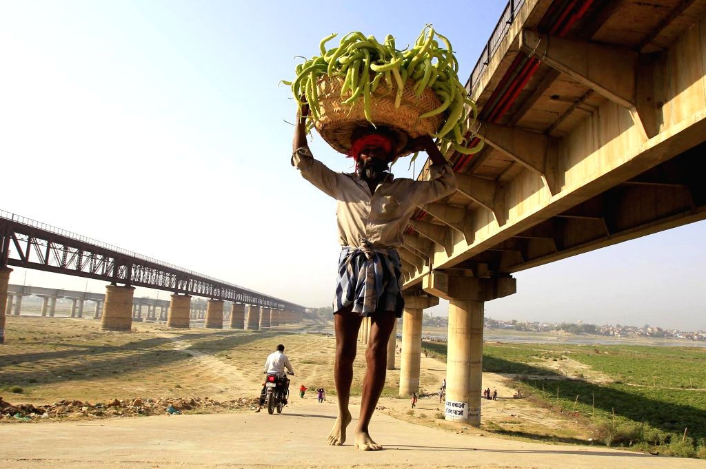 A man walks carrying a basket of cucumber on his head on a hot day in Allahabad on April 11, 2016.
