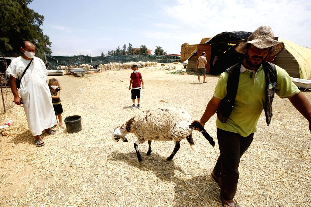 A man works at a stall selling living sheep ahead of Eid al-Adha in Algiers, Algeria, on July 12, 2020.
