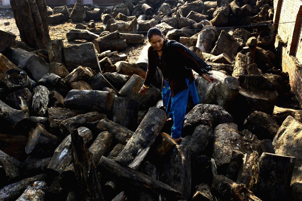 A Nepalese women selects wooden logs provided by the Nepalese government at Pashupatinath, in Kathmandu, Nepal, Nov. 15, 2015. Due to the strike done by the ...