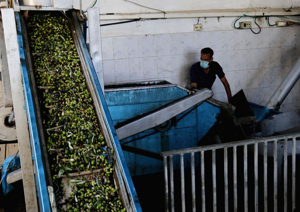 A Palestinian works at a traditional olives mill at Nuseirat Refugee Camp in the central Gaza Strip, on Oct. 18, 2020. Farmers across the Palestinian territories have ...