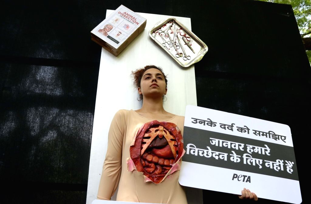 A PETA activist stages a demonstration to urge people to denounce animal dissection in New Delhi, on April 28, 2017.