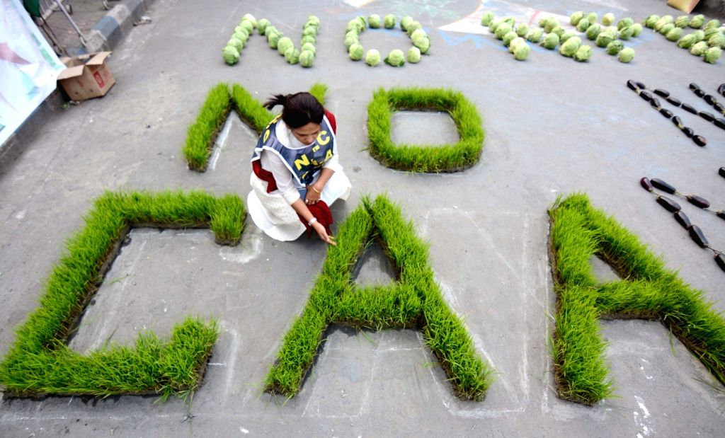 """A protester arranges vegetables in the formation of """"NO CAA"""" at a Kolkata street during a demonstration against the Citizenship Amendment Act (CAA) 2019, National Register of ..."""