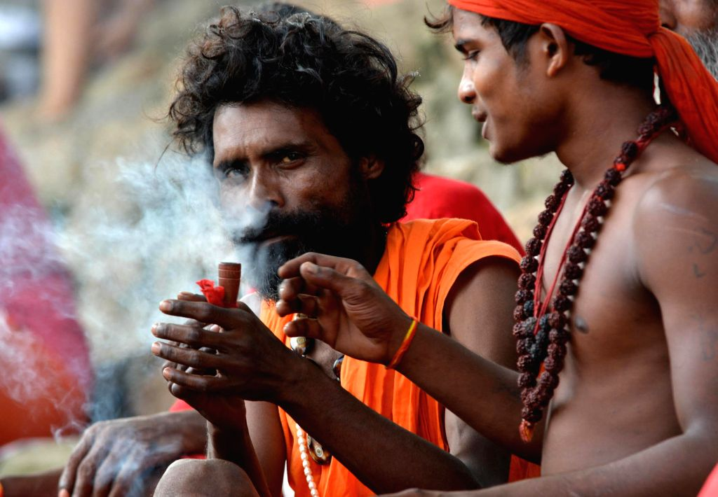 A sadhu (ascetic) smokes Ganja at the Kamakhya Temple in Guwahati on June 19, 2014. Hundreds of Sadhus have arrived at the Kamakhya Temple ahead of Ambubachi Mela, also known as Ambubasi festival.