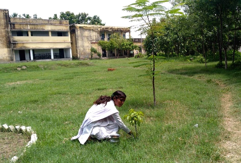 A school in Madhubani block of West Champaran district of Bihar is not only imparting bookish knowledge to children but also teaching them to contribute towards the environment. Students getting enrolled in the school have to plant a sapling in the s