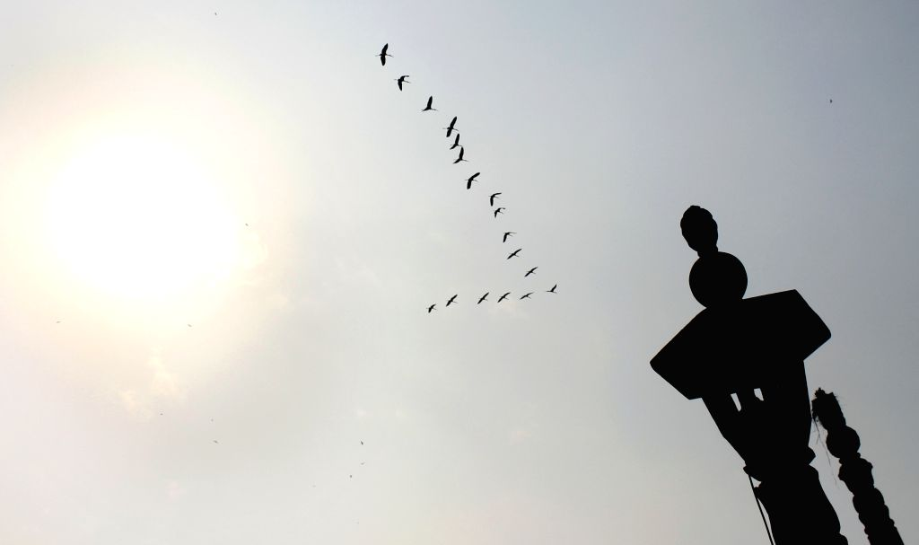 A silhouette of birds flying past the brightly shining sun in the smoggy skies of the national capital on Oct 26, 2020.