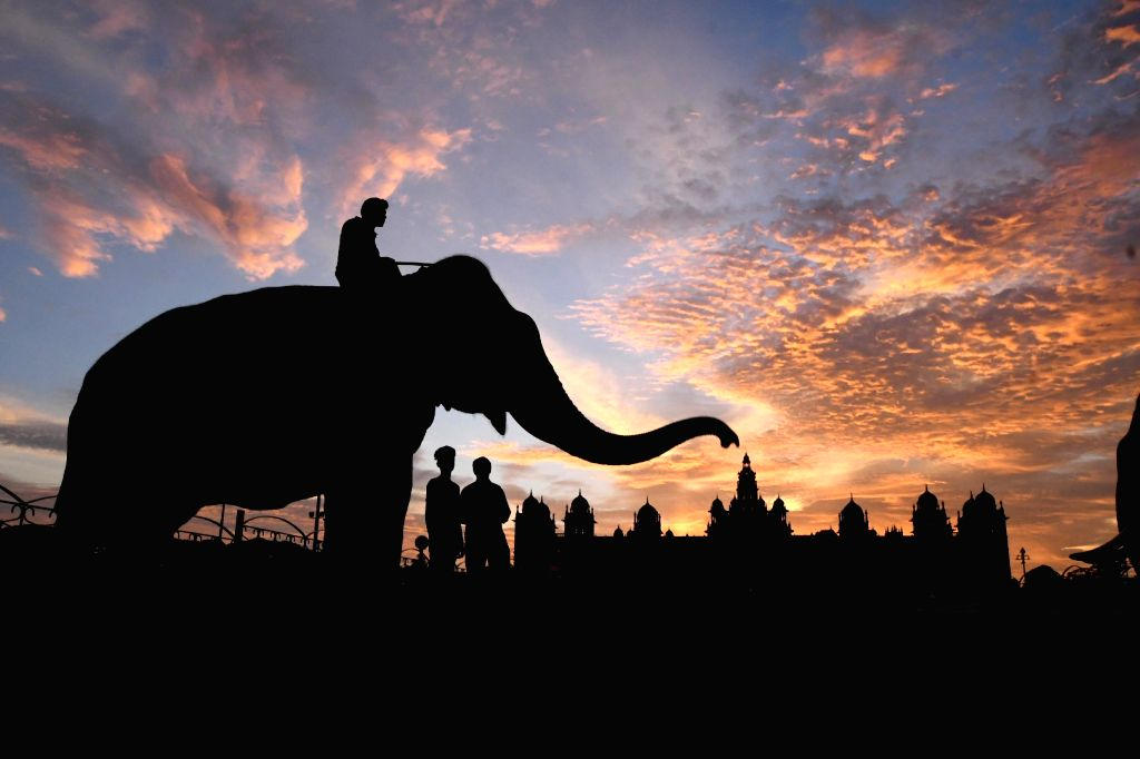 A silhouette of Dasara elephants outside the Mysore Palace in the backdrop of orange-tinged skies during sunset, in Mysuru on Sept 19, 2018.