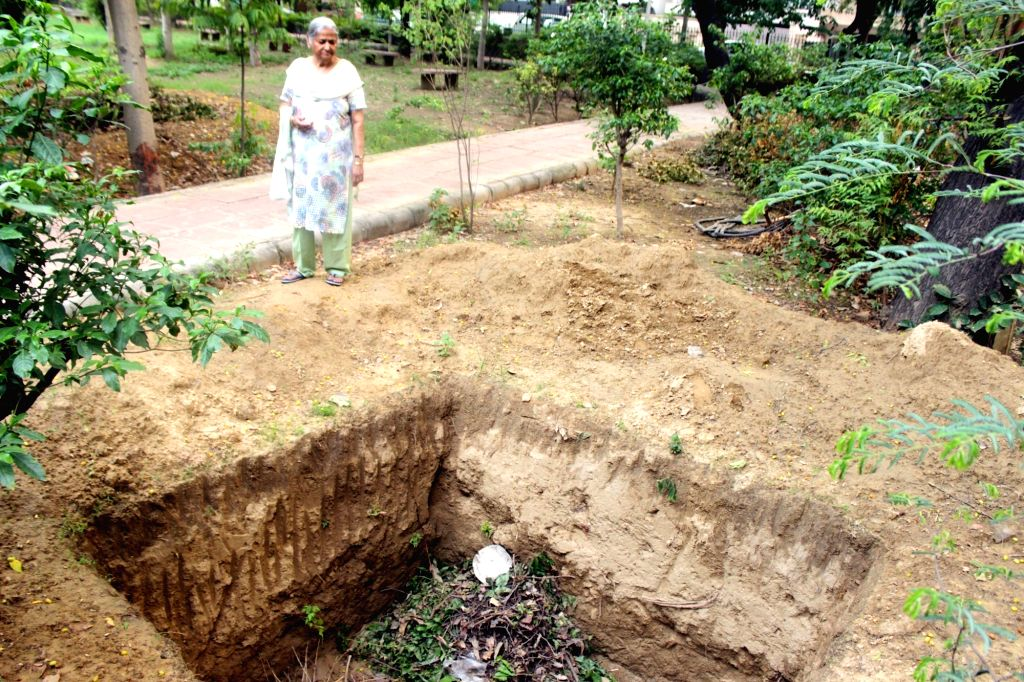 A six feet deep uncovered compost pit in a South Municipal Corporation of Delhi (SDMC) controlled park. According to the Delhi Government there are about 700 such compost pits in parks of ...