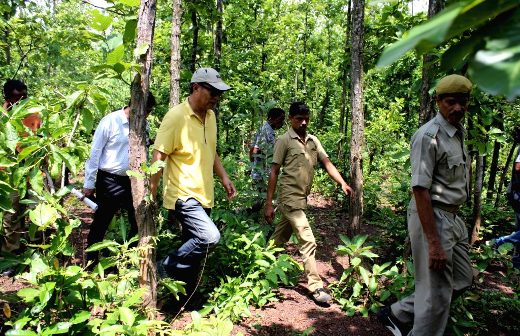 A team of National Tiger Conservative Authority (NTCA) reaches the forests of Lalgarh, to investigate the cause of the death of Royal Bengal Tiger the carcass of which was found 16 months ...