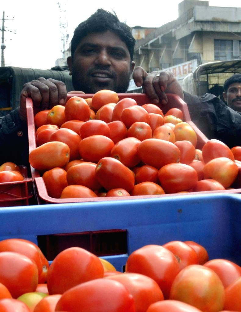 A tomato vendor sells tomatoes at Kalasipalya Vegetable Market, where the prices of the tomatoes are sky rocketing in the retail market due to the crop loss; in Bengaluru on June 18, 2016.
