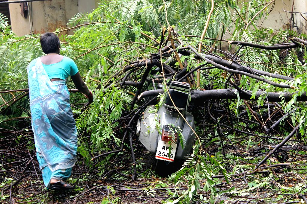 A tree falls on a scooter after strong gusts and heavy rains lashed Hyderabad on May 9, 2014.