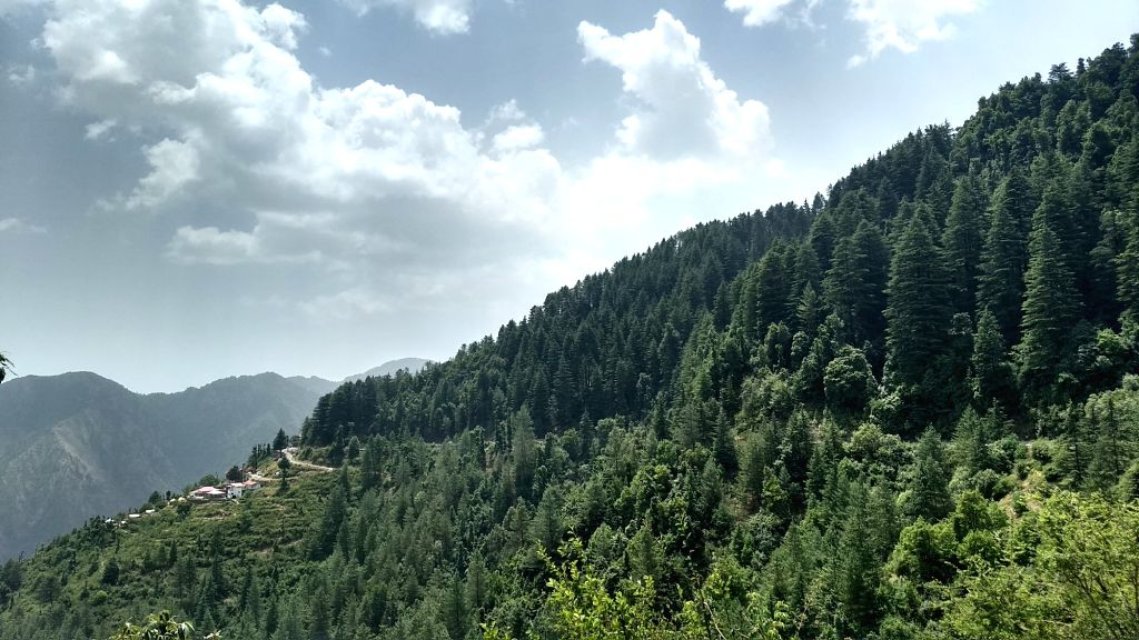 A valley in Dhanaulti. (Photo: IANS)