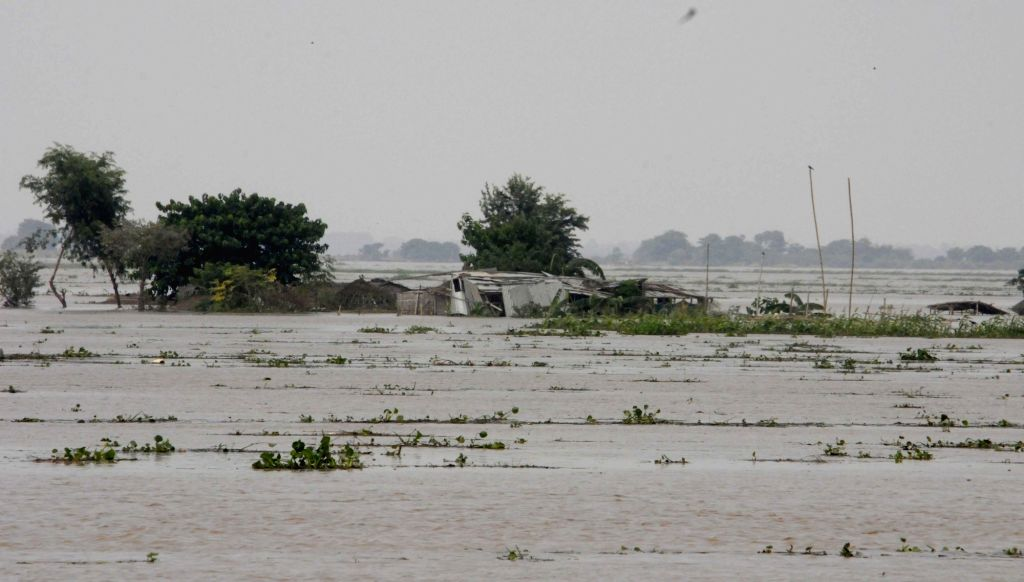 A view of a flood hit village in Patna district of Bihar on Aug 20, 2016.