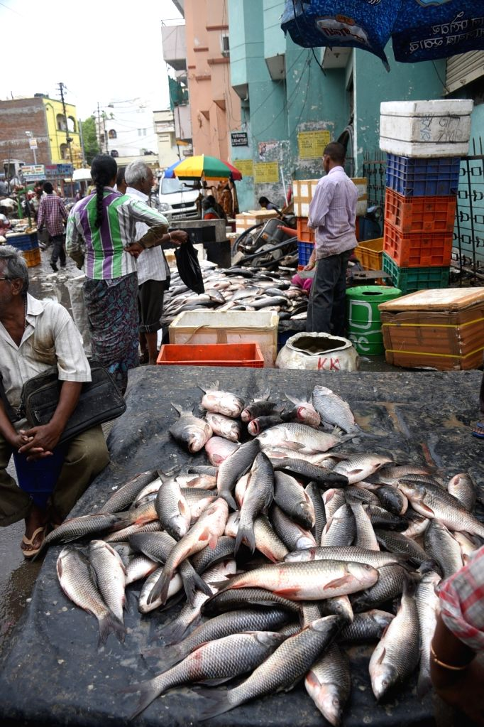 A view of fish market in Hyderabad on June 7, 2018.