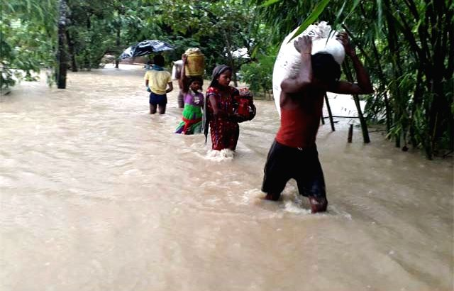 A view of flood hit Bhagamandala in Dighalbank district of Bihar on Aug 12, 2017.