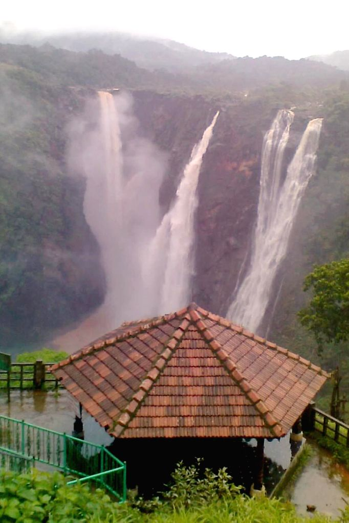 A view of Jog Falls after heavy rains in Shimoga of Karnataka on July 15, 2014.