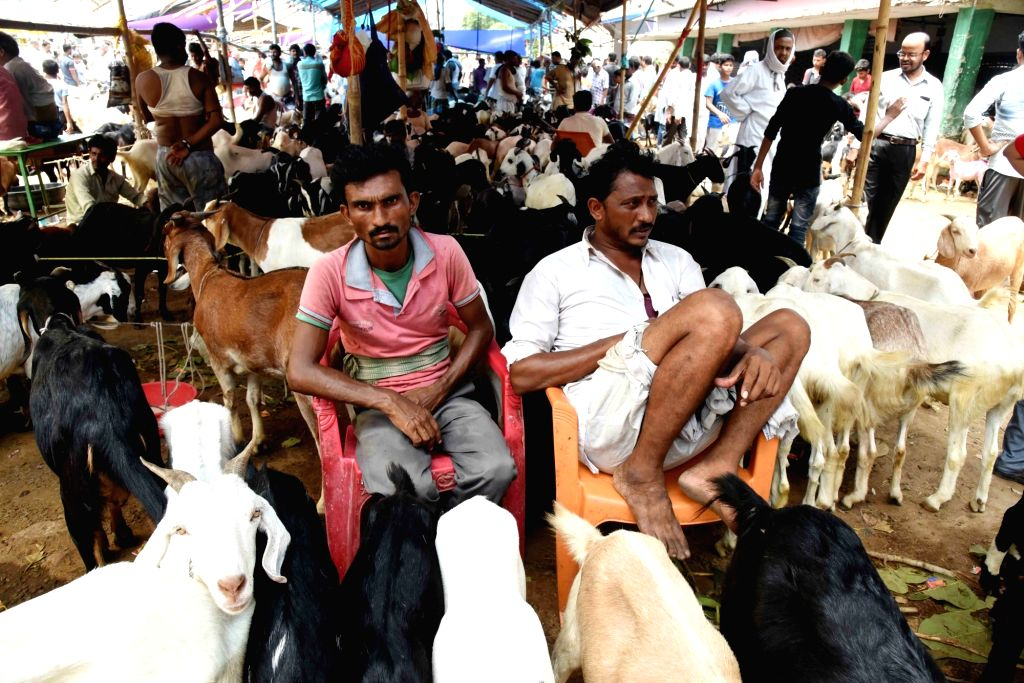 A view of livestock market ahead of Eid-Ul-Zuha celebrations, in Patna on Aug 10, 2019.