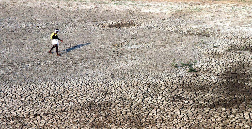 A view of parched piece of land near Chembarambakkam Lake as days become hot in Chennai on March 6, 2017.