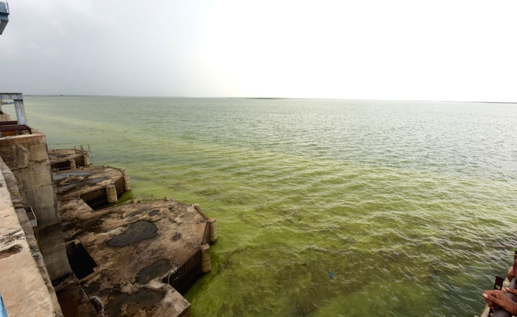 A view of Singur Dam in Bhusareddipalle, Telangana on Sept 16, 2016.