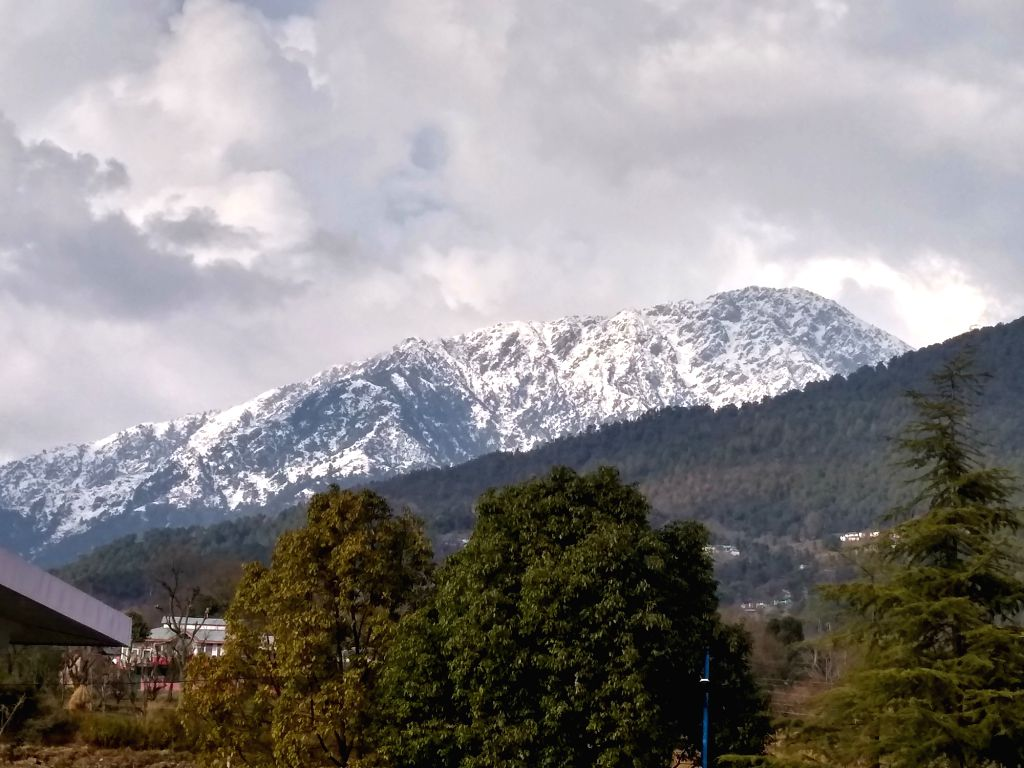 A view of snow capped Dhauladhar Range as seen from Palampur on Jan 26, 2019.