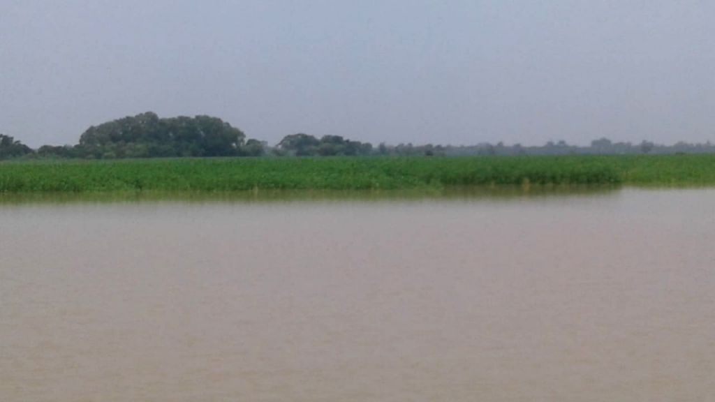 A view of the flood affected Katihar in Bihar, on July 17, 2019.