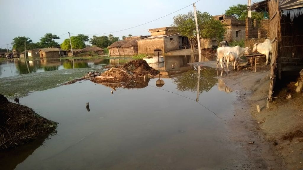 A view of the flood-affected Motihari in Bihar's East Champaran district on July 30.