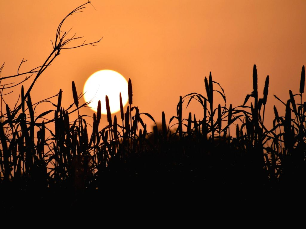 A view of the rising sun as seen from Mathura.