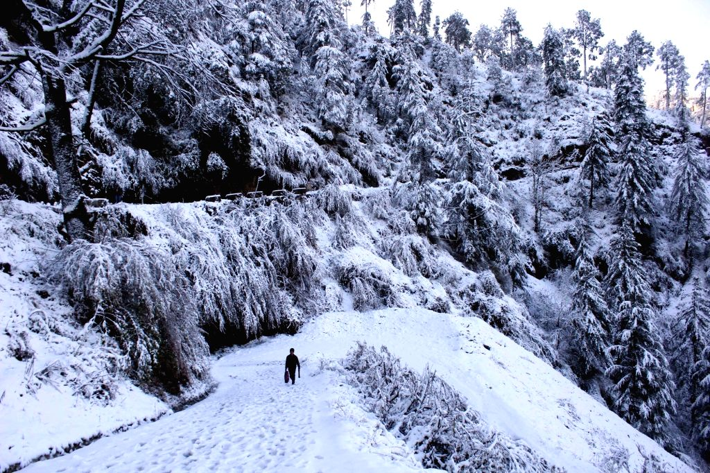 A view of the snow-covered landscape of Shimla after snowfall, on Feb 7, 2019.