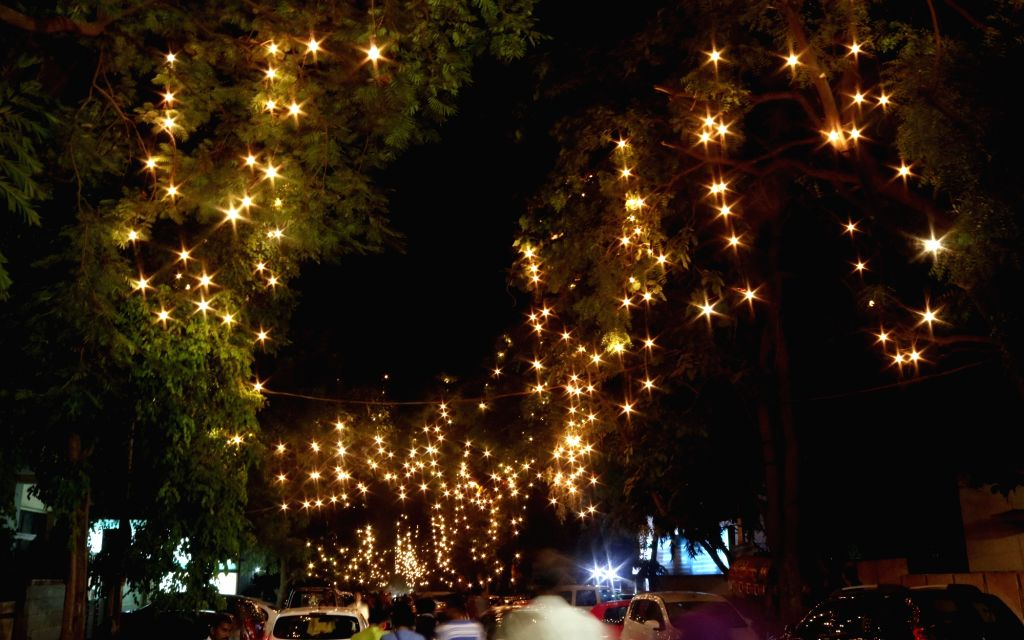 A view of trees illuminated with trees at CR Park during Durga Puja in New Delhi, on Oct 7, 2016.