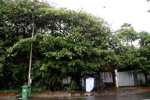 A view of veteran actress Rekha's bungalow in the Bandstand area of the Bandra locality that has been sealed by Brihanmumbai Municipal Corporation (BMC) after a security guard tested positive ... - Rekh