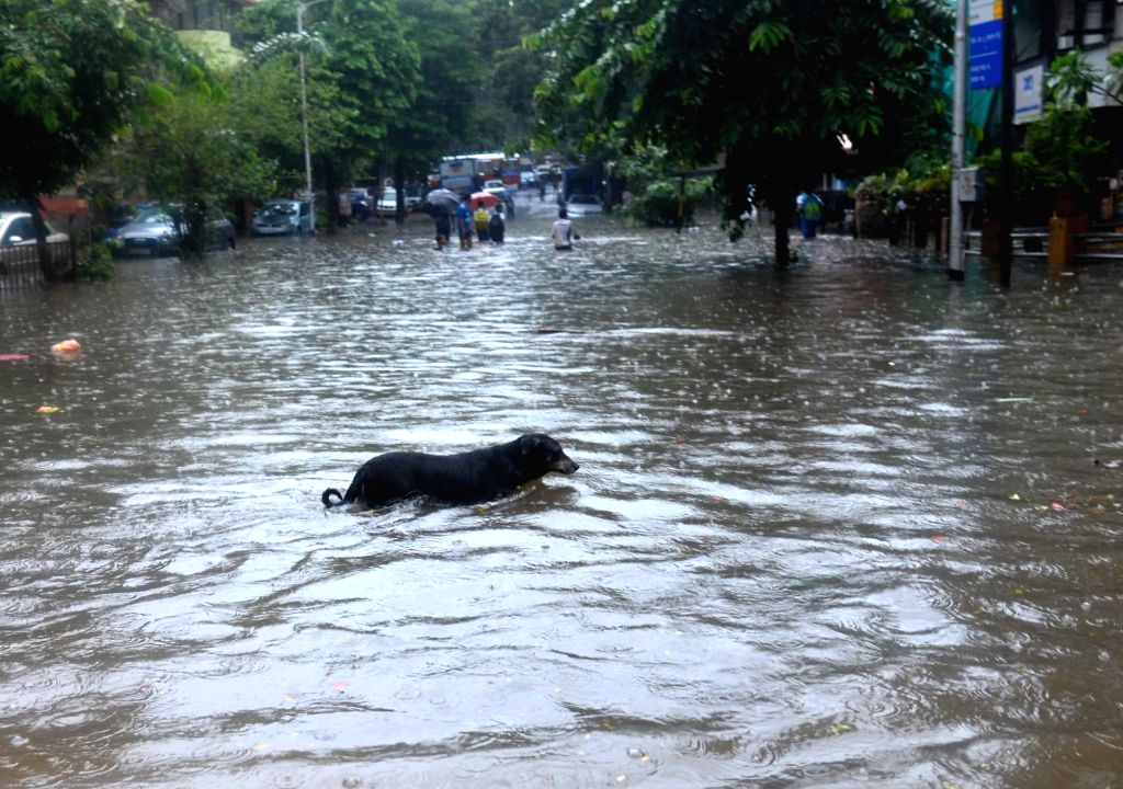 A view of water logged roads of Mumbai after heavy rains on June 27, 2017.