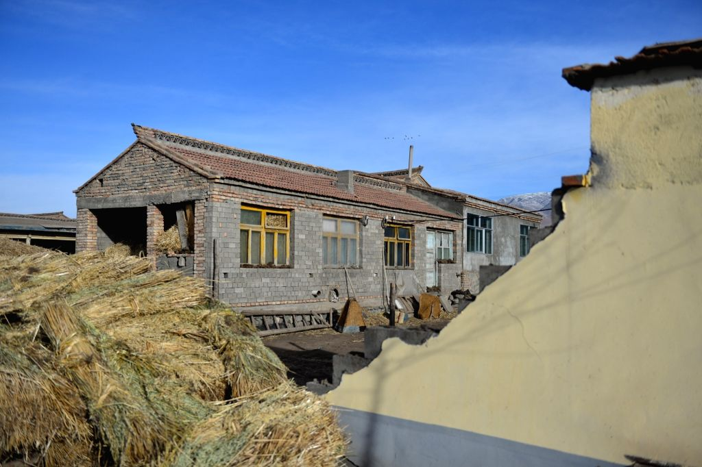 A wall is damaged at quake-hit Beishan Township in Menyuan County of Haibei Tibetan Autonomous Prefecture, northwest China's Qinghai Province, Jan. 21, 2016. A ...