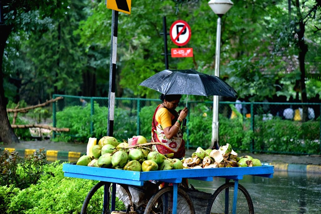 A woman sells coconut water while shielding herself with an umbrella during rains in Bengaluru on Sept 17, 2017.