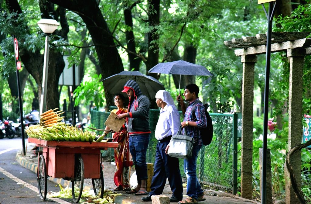 A woman sells corn as people wait to buy them while shielding themselves with umbrellas during rains in Bengaluru on Sept 17, 2017.