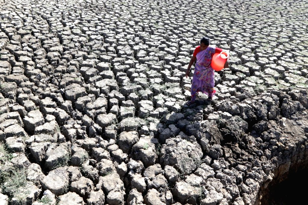 A woman walks back home after collecting water from an opening made by locals by digging up a dried-up lake, amid scarcity of water in Chennai, on June 13, 2019.