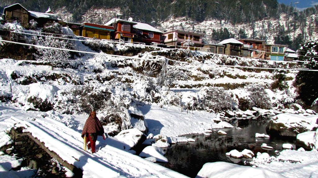 A woman walks on snow clad bridge in Jhanjheli village of Himachal Pradesh`s Mandi district.