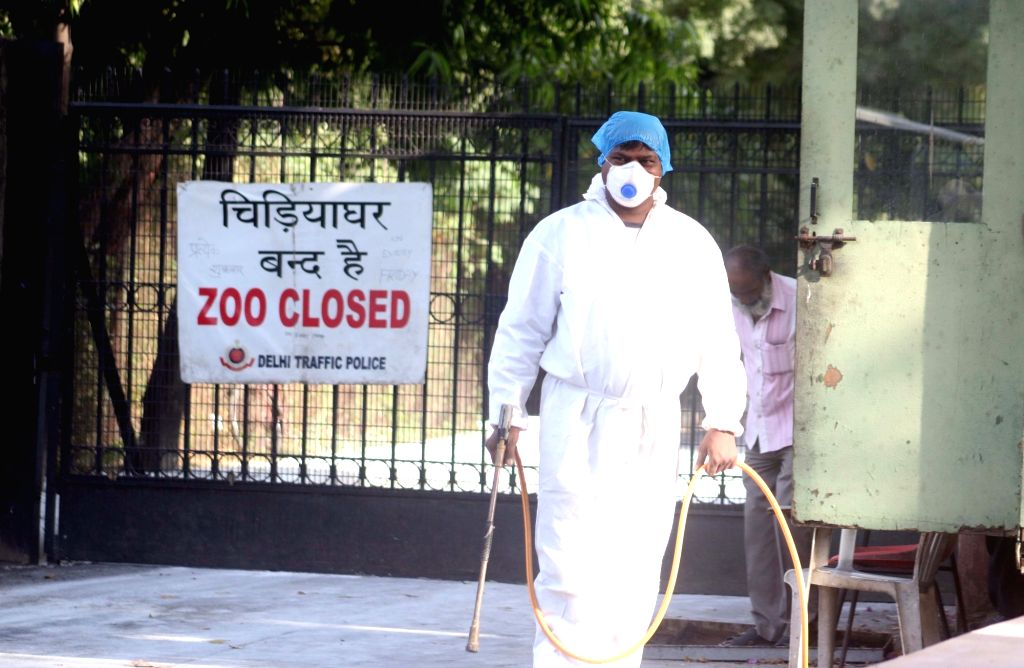A worker sprays disinfectant at Delhi Zoo after bird flu scare in New Delhi on Oct 22, 2016.