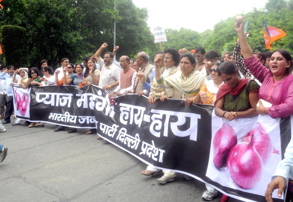 Activists of Bharatiya Janata Party during a demonstration to protest against the rising onion prices in New Delhi on August 14, 2013. (Photo::: IANS)