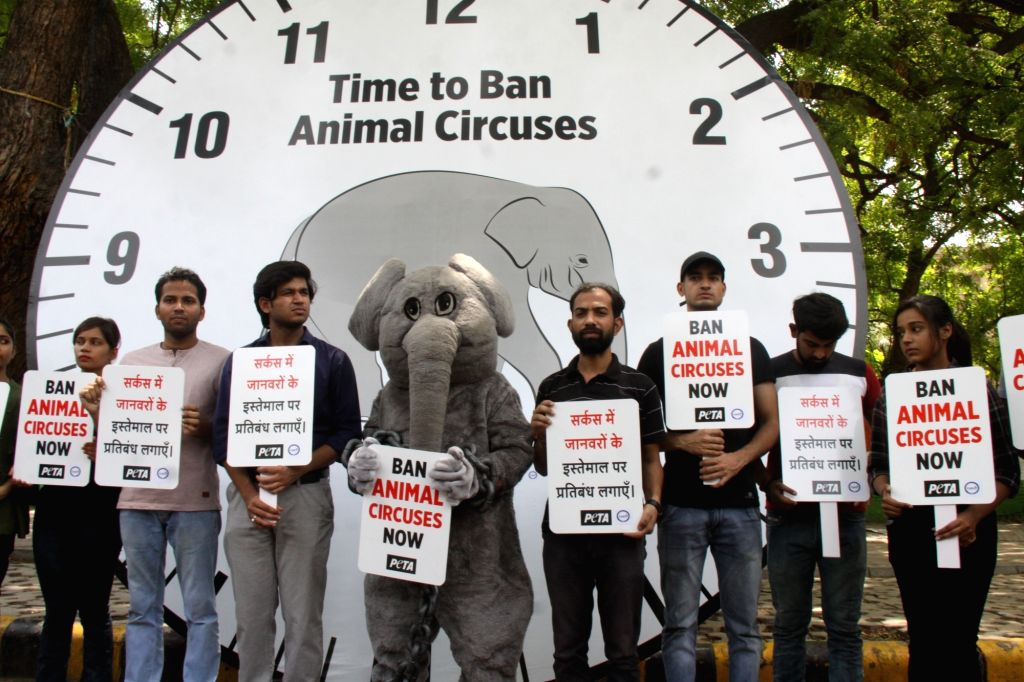 Activists of People for the Ethical Treatment of Animals (PETA) stage a demonstration pressing for a ban on animal circus, in New Delhi on June 13, 2019.