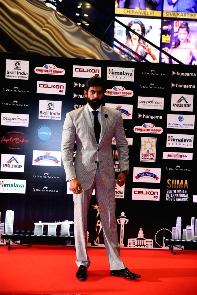 Actor Rana Daggubati at SIIMA Awards 2016. - Rana Daggubati