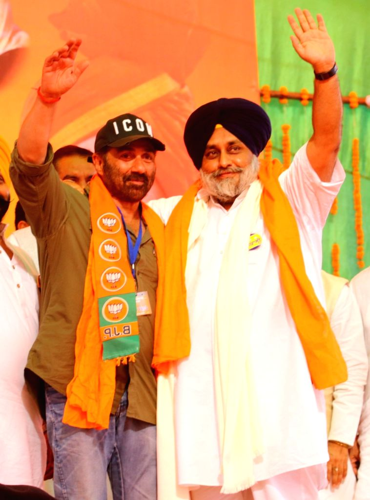 Actor-turned-politician BJP's candidate from Gurdaspur, Sunny Deol and Shiromani Akali Dal (SAD) President and party's Lok Sabha candidate from Ferozepur, Sukhbir Singh Badal during a ... - Sukhbir Singh Badal