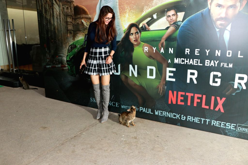 """Actress Chahat Khanna at the screening of their upcoming Netflix web series """"6 Underground"""", in Mumbai on Dec 12, 2019. - Chahat Khanna"""