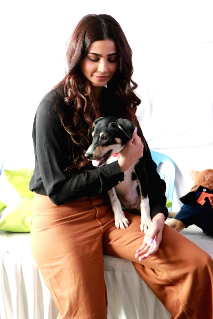 Actress Daisy Shah during 'Adoptathon 2019'- Asia's Largest Adoption Fair with up to 180 fully groomed and vaccinated puppies and kittens available for adoption, in Mumbai on Dec 6, 2019. - Daisy Shah