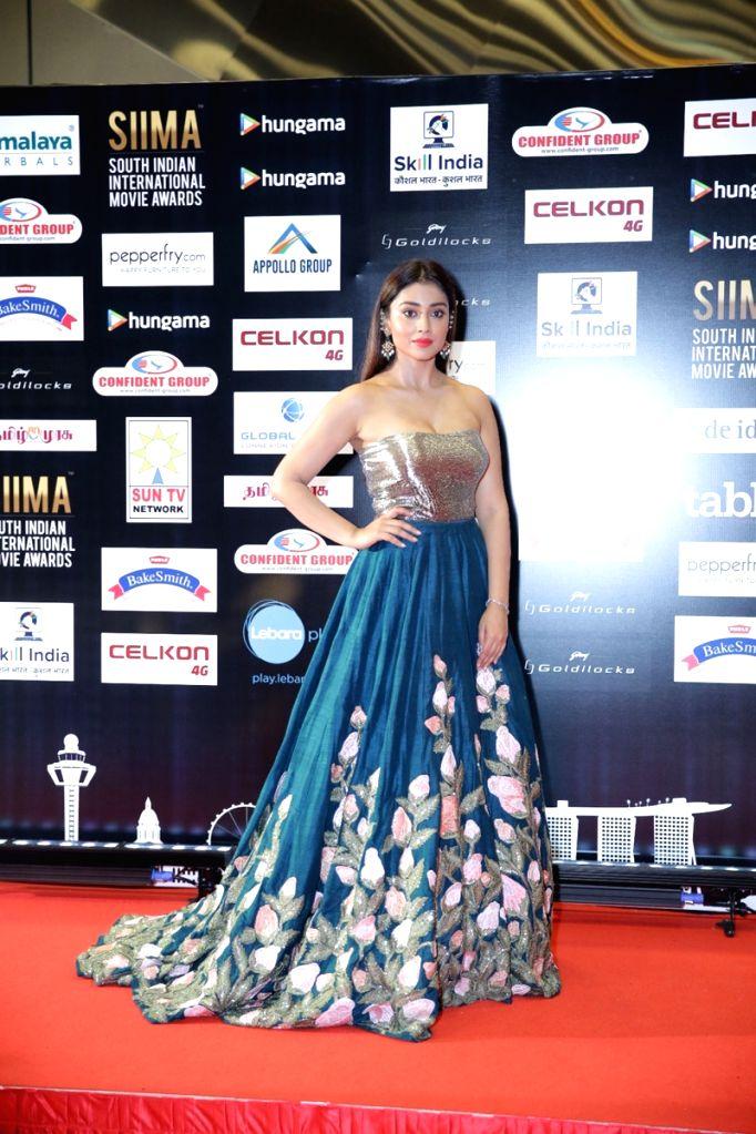 Actress Shriya Saran on the second day of SIIMA Awards 2016. - Shriya Saran