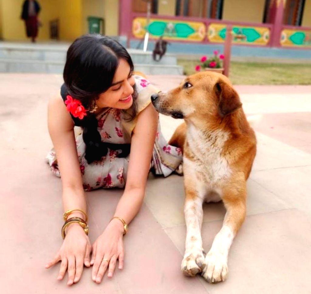 Adah Sharma: Feel more comfortable around animals than humans. - Adah Sharma