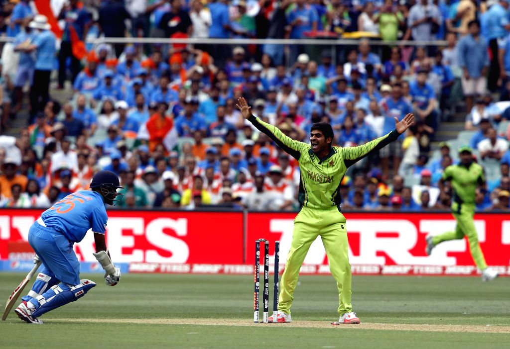 A Pakistani player celebrates fall of a wicket during an ICC World Cup 2015 match between India and Pakistan at Adelaide Oval in Adelaide, Australia on Feb 15, 2015.