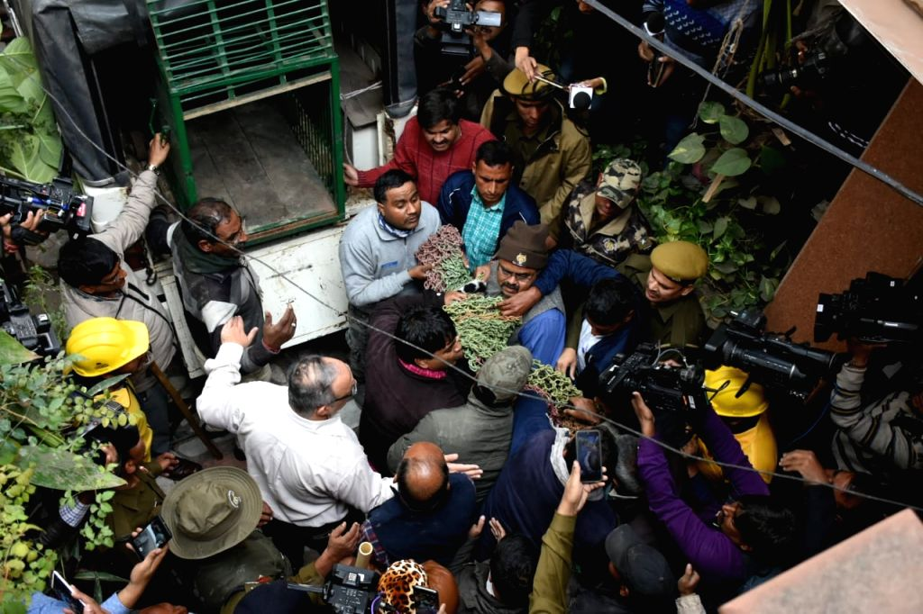 After a frantic search of around 21 hours, the forest department finally caught the panther from the Lal Kothi area in Rajasthan's Jaipur, where it was tranquillised and put in a cage, on Dec ...