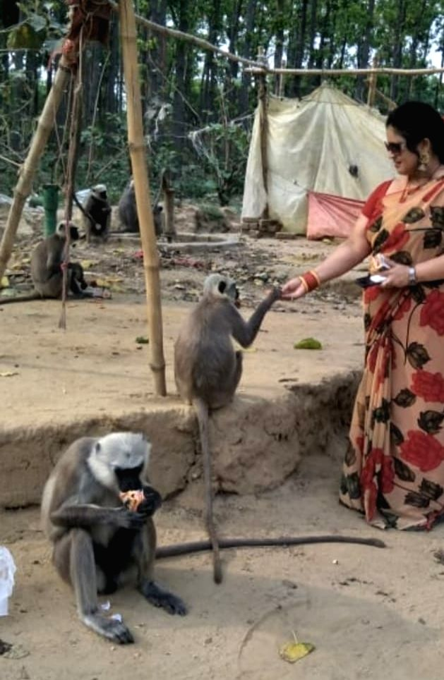 Aishwarya Pandey feeds forest monkeys. - Aishwarya Pandey