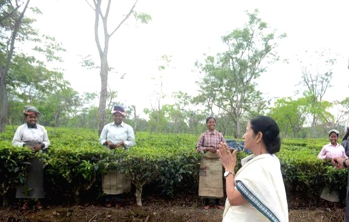 West Bengal Chief Minister Mamata Banerjee duing her visit to the tea gardens in Alipurduar of West Bengal.