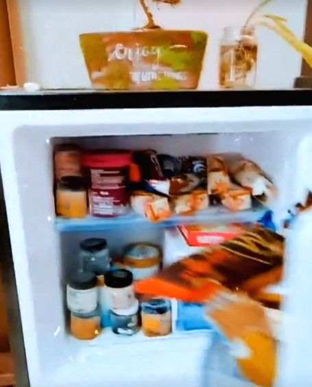 Allu Sirish hates 'foodie people's refrigerators'.(photo:instagram)
